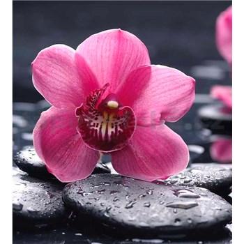 Vliesové fototapety orchidej s kameny rozměr 225 cm x 250 cm