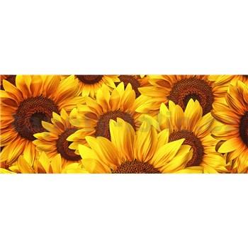 Vliesové fototapety květy slunečnic rozměr 375 cm x 150 cm