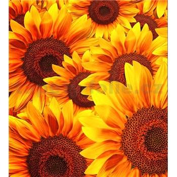 Vliesové fototapety květy slunečnic rozměr 225 cm x 250 cm