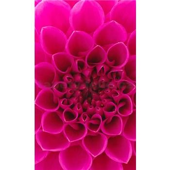 Vliesové fototapety růžové dahli rozměr 150 cm x 250 cm