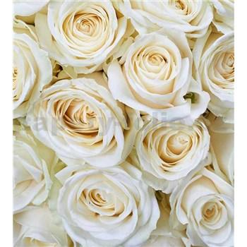 Vliesové fototapety bílé růže rozměr 225 cm x 250 cm