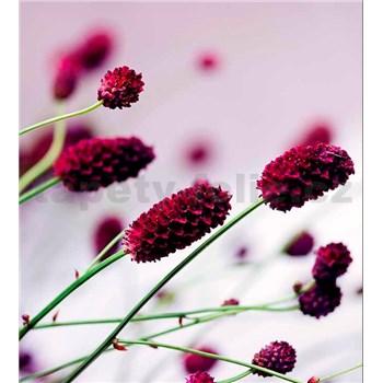 Vliesové fototapety květiny fialové rozměr 225 cm x 250 cm