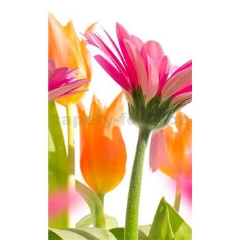 Vliesové fototapety jarní květy rozměr 150 cm x 250 cm