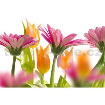 Vliesové fototapety jarní květy rozměr 375 cm x 250 cm