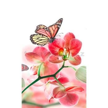 Vliesové fototapety orchidej s motýly rozměr 150 cm x 250 cm