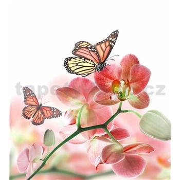 Vliesové fototapety orchidej s motýli rozměr 225 cm x 250 cm