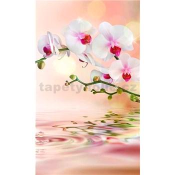 Vliesové fototapety bílá orchidej rozměr 150 cm x 250 cm