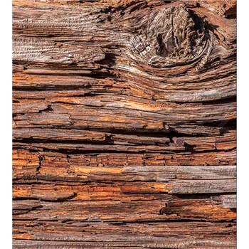 Vliesové fototapety kůra stromu rozměr 225 cm x 250 cm