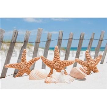 Vliesové fototapety mořská hvězdice rozměr 375 cm x 250 cm