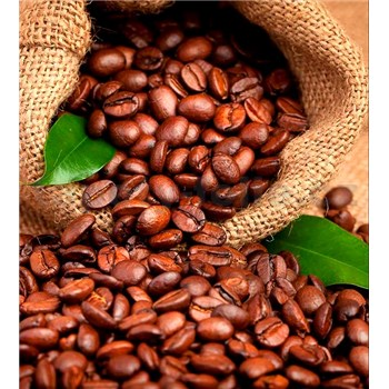 Vliesové fototapety kávová zrnka rozměr 225 cm x 250 cm