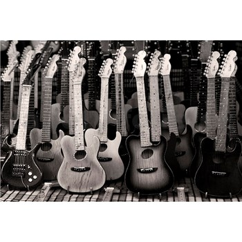 Vliesové fototapety kytarová kolekce rozměr 375 cm x 250 cm