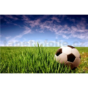 Vliesové fototapety fotbalový míč rozměr 375 cm x 250 cm