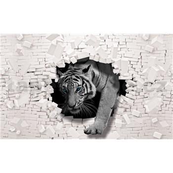 Vliesové fototapety bílý tygr a 3D zeď rozměr 368 cm x 254 cm