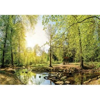 Vliesové fototapety les s potokem rozměr 312 cm x 219 cm