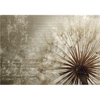 Vliesové fototapety Dandelion rozměr 368 cm x 254 cm