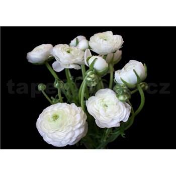 Vliesové fototapety bílé květy na černém pozadí rozměr 254 cm x 368 cm