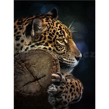 Vliesové fototapety jaguár rozměr 184 cm x 254 cm