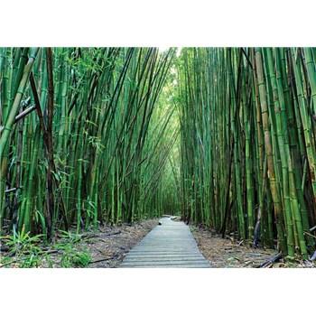 Vliesové fototapety bambus Vietnam rozměr 368 cm x 254 cm