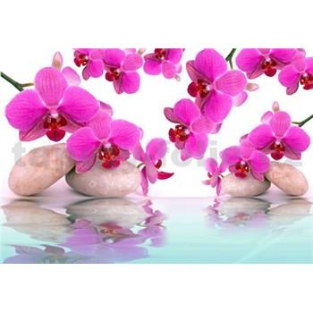 Vliesové fototapety orchideje růžové rozměr 312 cm x 219 cm