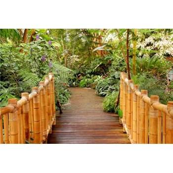 Vliesové fototapety most do zahrady rozměr 312 cm x 219 cm