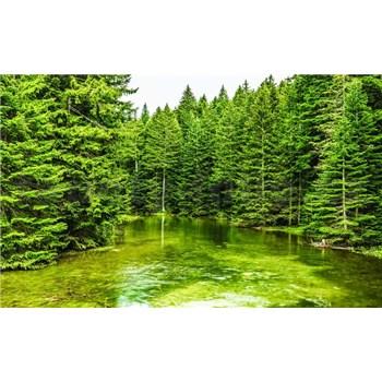 Fototapety lesní jezero rozměr 368 cm x 254 cm