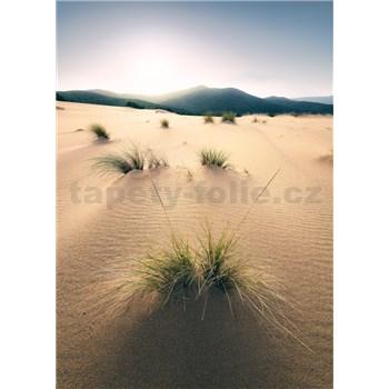 Vliesové fototapety Hefele písečné duny, rozměr 200 cm x 280 cm