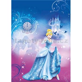 Fototapeta Disney Popelka rozměr 184 cm x 254 cm