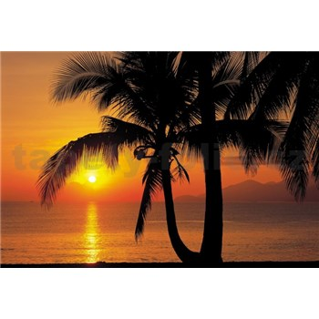Fototapety Palmy Beach Sunrise rozměr 368 cm x 254 cm