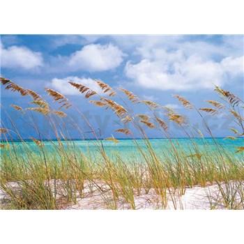 Fototapety Ocean Breeze