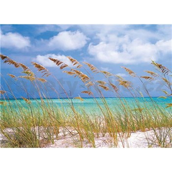 Fototapety Ocean Breeze rozměr 368 cm x 254 cm