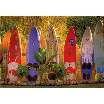 Fototapety Surf rozměr 368 cm x 254 cm
