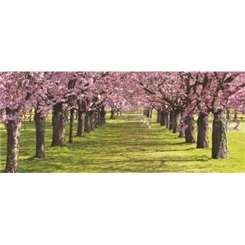 Vliesové fototapety spring rozměr 250 cm x 104 cm