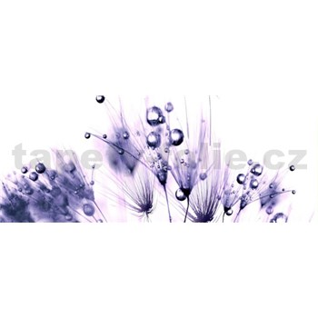 Vliesové fototapety fialové rostliny s rosou rozměr 250 cm x 104 cm