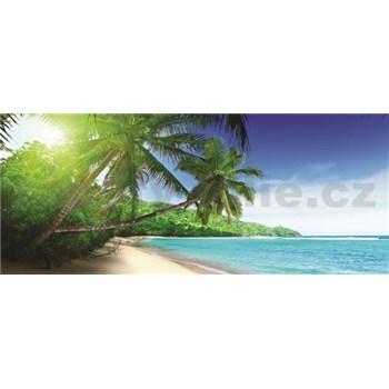 Vliesové fototapety palmy na pláži rozměr 250 cm x 104 cm