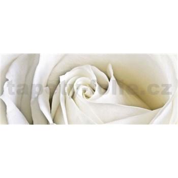 Vliesové fototapety bílá růže rozměr 250 cm x 104 cm
