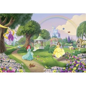 Fototapety Disney Princess duha rozměr 368 cm x 254 cm