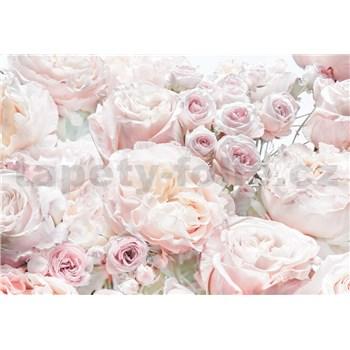 Fototapety jarní růže rozměr 368 cm x 254 cm