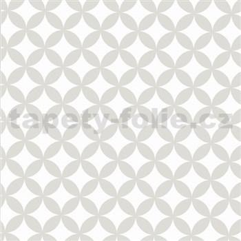 Statické tapety transparentní Elliott White 45 cm x 15 m