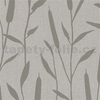 Vliesové tapety na zeď IMPOL Giulia rákos stříbrný na hnědém podkladu