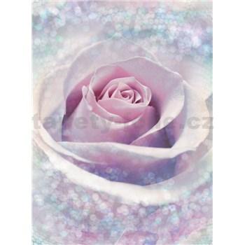 Vliesové fototapety růže rozměr 184 cm x 248 cm