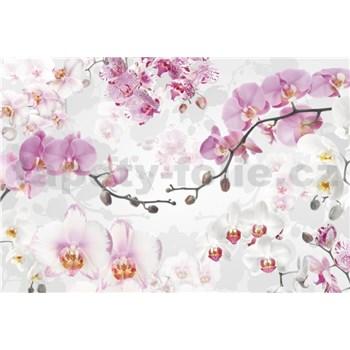 Vliesové fototapety orchidej rozměr 368 cm x 248 cm