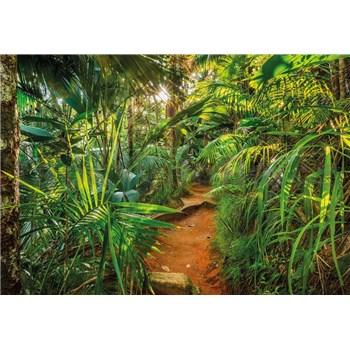 Fototapety Jungle Trail rozměr 368 cm x 254 cm