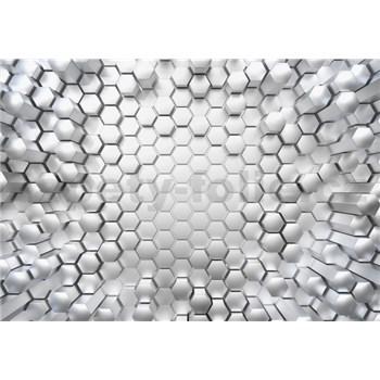 Fototapety 3D Titanium rozměr 368 cm x 254 cm