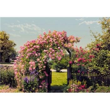 Fototapety Rose Garden rozměr 368 cm x 254 cm