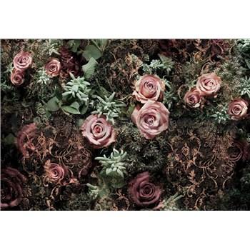 Fototapety Velvet rozměr 368 cm x 254 cm