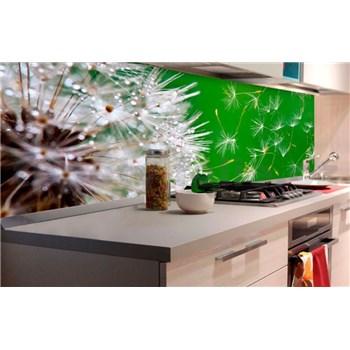 Samolepící tapety za kuchyňskou linku pampelišky rozměr 180 cm x 60 cm