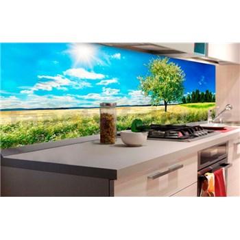 Samolepící tapety za kuchyňskou linku rozkvetlý strom rozměr 180 cm x 60 cm