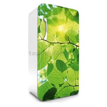 Samolepící tapety na lednici zelené listy rozměr 120 cm x 65 cm