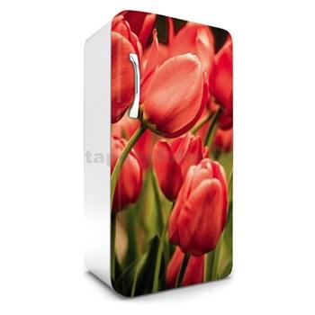 Samolepící tapety na lednici tulipány rozměr 120 cm x 65 cm