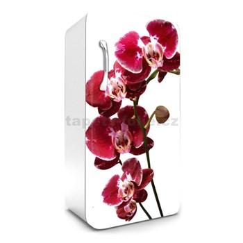 Samolepící tapety na lednici orchidej rozměr 120 cm x 65 cm